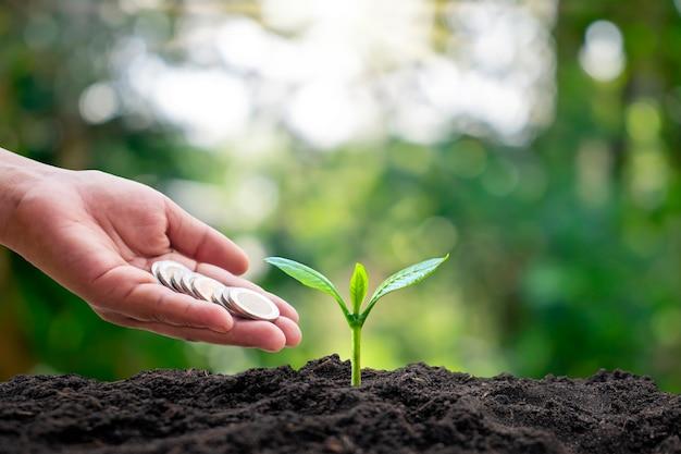 Bomen die op de grond groeien, inclusief handen die munten geven aan bomen, financiën en zakelijke ideeën.