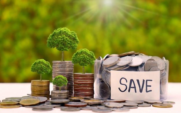Bomen die op muntstukken en muntstukken in een kruik op een natuurlijke achtergrond groeien. groei en besparingsconcepten.