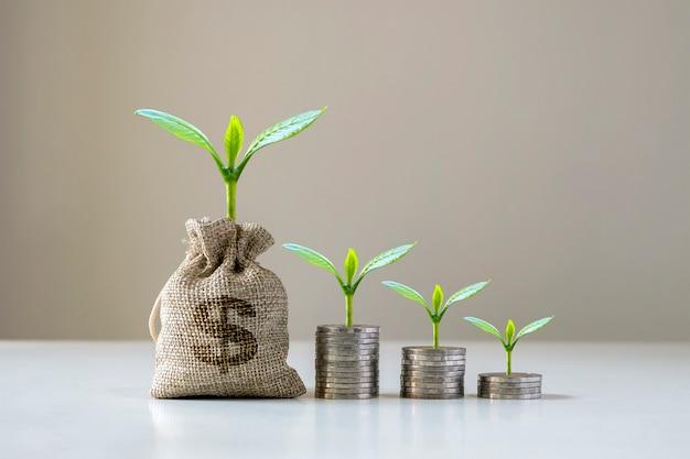 Bomen groeien en geld stroomt uit eigen zak om geld te besparen. geldbesparende ideeën