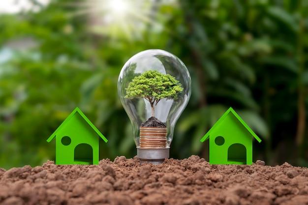 Bomen groeien op geldstapels in spaarlampen en kasmodellen, energiebesparende huisideeën. milieuvriendelijke innovatie