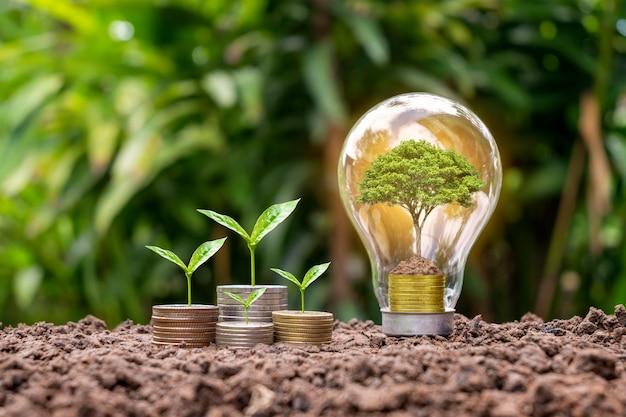 Bomen groeien op munten in spaarlampen, energiebesparende en milieuconcepten op de dag van de aarde.