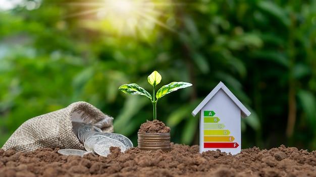 Bomen groeien op stapels geld en energiebesparende huismodellen, energiebesparende huisideeën. milieuvriendelijke innovatie