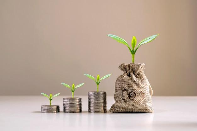 Bomen groeien uit zakken geld en bomen groeien op stapels geld. financieel denken