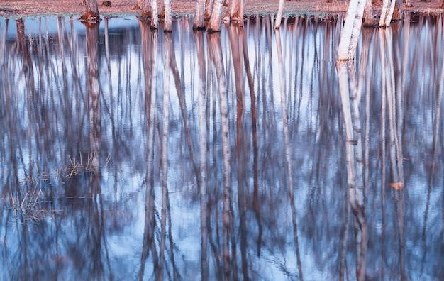 Bomen in de lente gesmolten wateren achtergrond hd