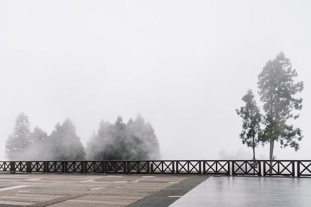 Bomen met mist, misty landschap op het gebied van alishan forest railway station