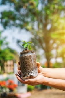 Bomen of zaailingen groeien op stapel munten geld in een glazen pot.
