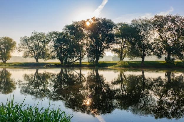 Bomen op de oever van de rivier tegen de rijzende zon in zomerochtend. rivierlandschap