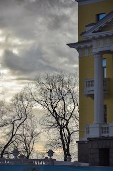 Bomen tegen een heldere hemel, bomen tegen een zonsondergang, zonsondergang