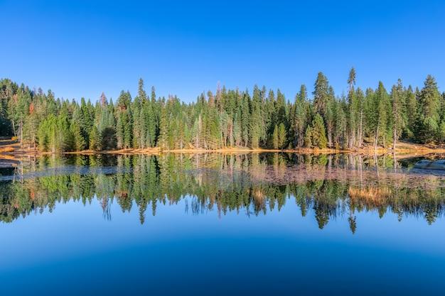 Bomen worden weerspiegeld in het wateroppervlak van het meer in sequoia en kings canyon national park. vs