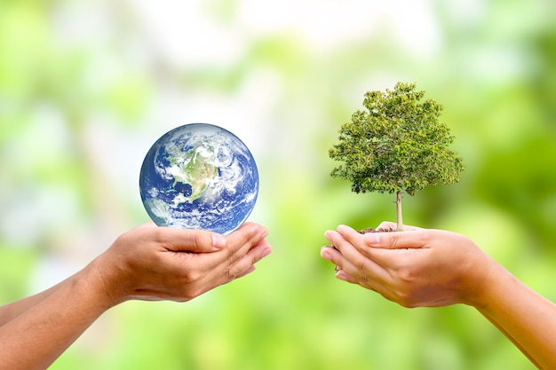 Boom groeit in menselijke hand met planeet in menselijke hand wereld aarde dag en milieubehoud concept elementen van deze afbeelding zijn ingericht door nasa.