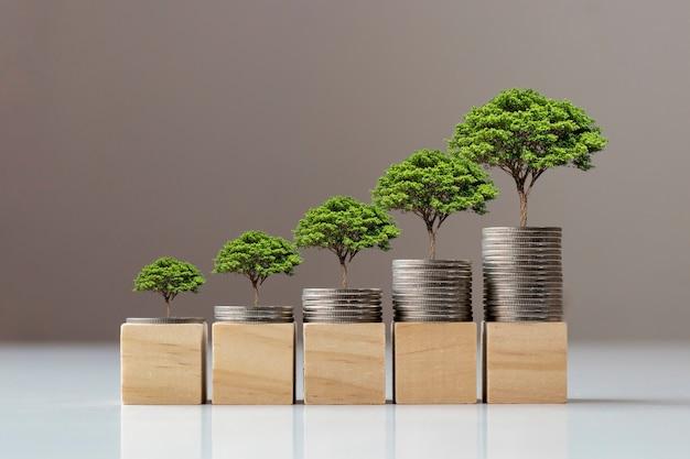 Boom groeit op een stapel munten en houten blokken, het concept van financiën en economische groei.