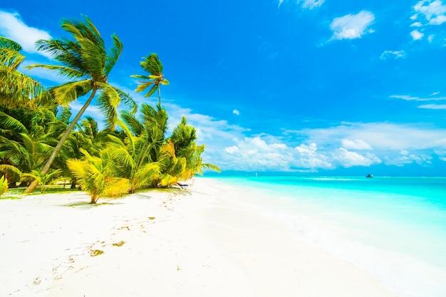 Boom hemel lagune maldiven toevlucht