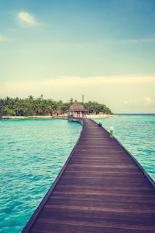 Boom hemel natuur, landschap, de maldiven