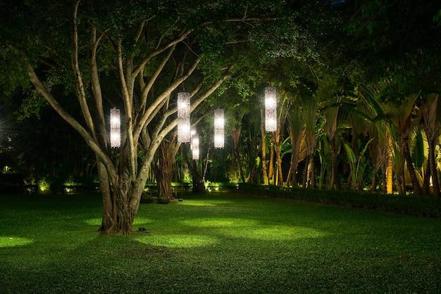 Boom met lampverlichting