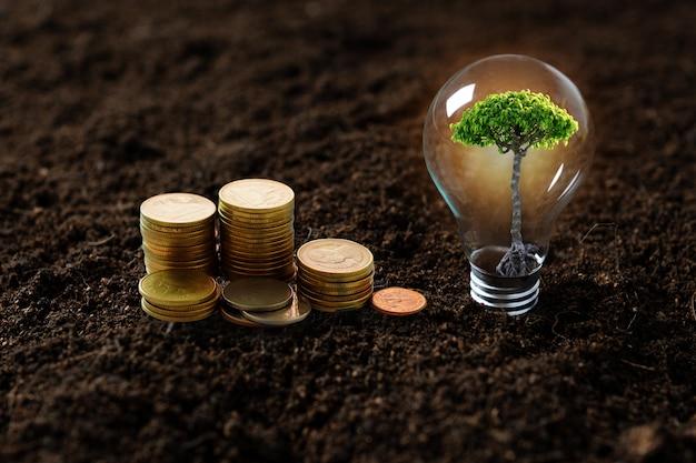 Boom planten, boompje opgroeien in gloeilamp en gestapeld geld munten