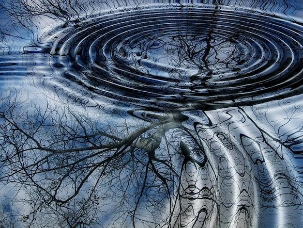 Boomringen water zie winter mirroring berken golf