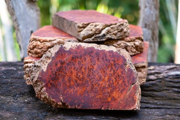 Boomstammen amboina wortelhout gestreept exotisch houten mooi patroon voor ambachtelijke kunst of achtergrond