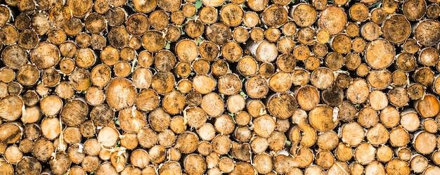 Boomstronken achtergrond. stukken van teak hout stomp achtergrond. ronde teakhouten stomp. rond teakhout bomen cirkel stronken gesneden groep.