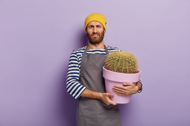 Boos man voelt zich moe van het planten van huisplanten, draagt een bloempot met grote cactus, werkt in de bloemenwinkel, draagt een gele hoed, een schort