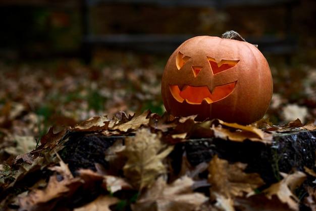 Boos oranje pompoen met eng grote ogen en glimlach. handgemaakte decoratie voorbereid voor halloween. herfstvakantie vieren in bos of park in de buurt van huis tussen bladeren.
