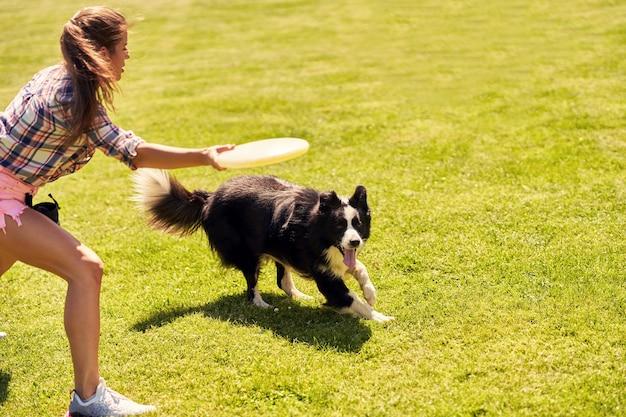 Border collie-hond en een vrouw op een behendigheidsveld