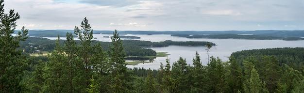 Bos en grote meren in de zomer, panorama, finland