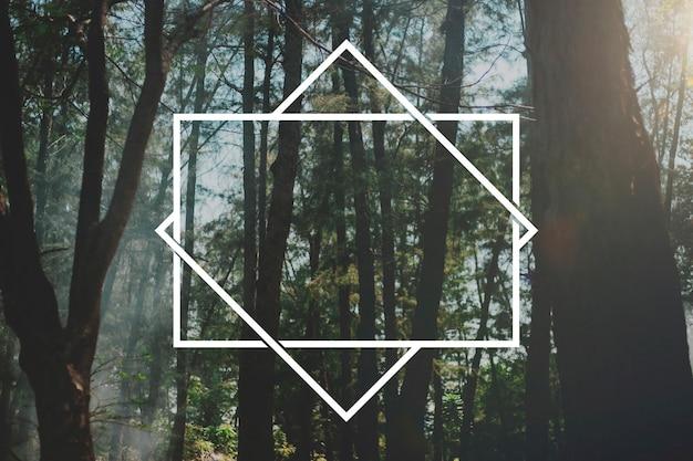 Bos natuur ontspan banner ruimte frame