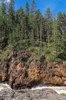 Bos op de rotsen boven de turbulente rivier, finland. oulanka nationaal park