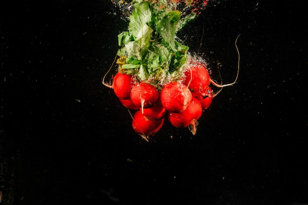 Bos rode roodval op zwarte achtergrond