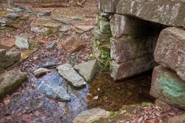 Bos ruïnes hdr