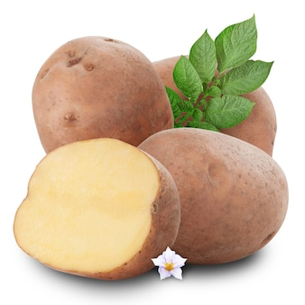 Bos van aardappelen op witte achtergrond