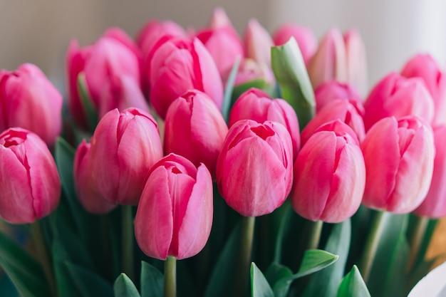 Bos van felroze tulpen