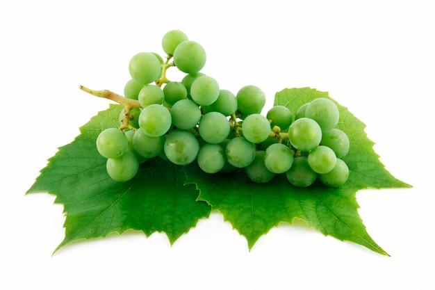 Bos van rijpe groene druiven met blad dat op witte achtergrond wordt geïsoleerd