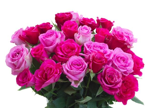 Bos van roze en magenta rozenclose-up die op witte achtergrond wordt geïsoleerd