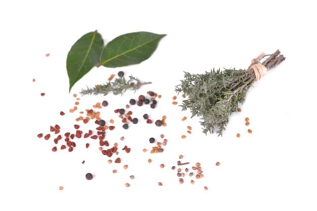 Bos van tijm en blad van zoete laurier en bessen kruiden geïsoleerd op een witte achtergrond