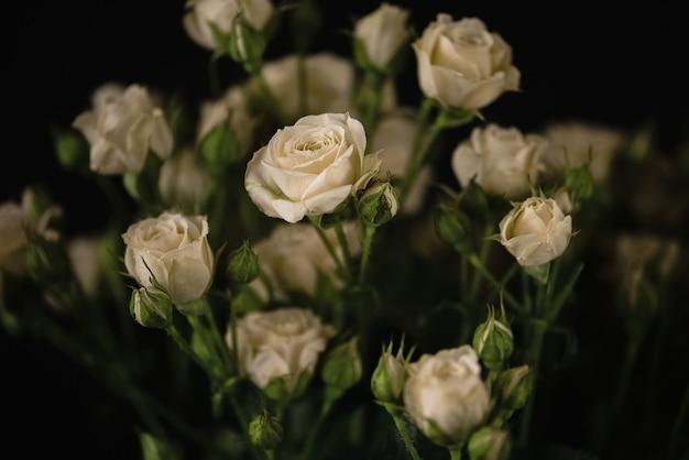 Bos van vers gesneden bleke witte rozen bloemen donker oppervlak