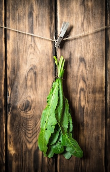 Bos van verse bladeren die aan een koord op houten achtergrond hangen