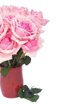 Bos van verse roze bloeiende rozen in klei pot close-up geïsoleerd op een witte achtergrond