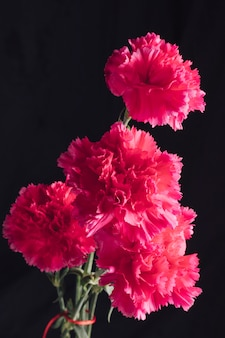 Bos van verse roze bloemen