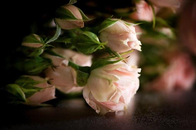 Bos van verse roze rozen bloemenachtergrond