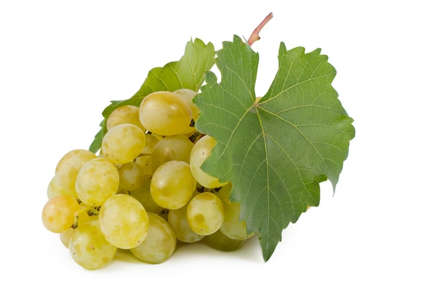 Bos van verse, sappige zoete groene druiven