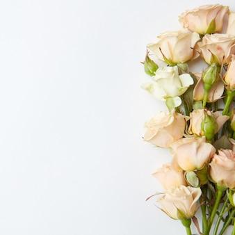 Bos van witte rozen die op witte achtergrond worden geïsoleerd