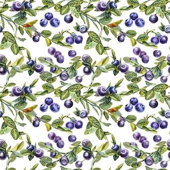 Bosbes. naadloze patronen. aquarel botanische illustratie