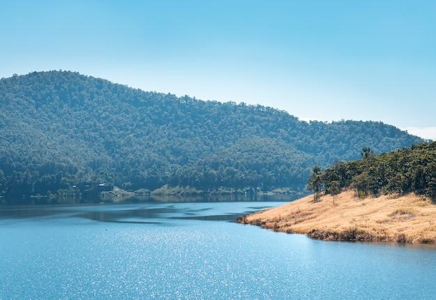 Boseiland in waterreservoirmeer van de dam van maekuang udomthara in chiang mai met mistheuvel op achtergrond, mooie beroemde landschapsaantrekkelijkheid voor toerist in thailand