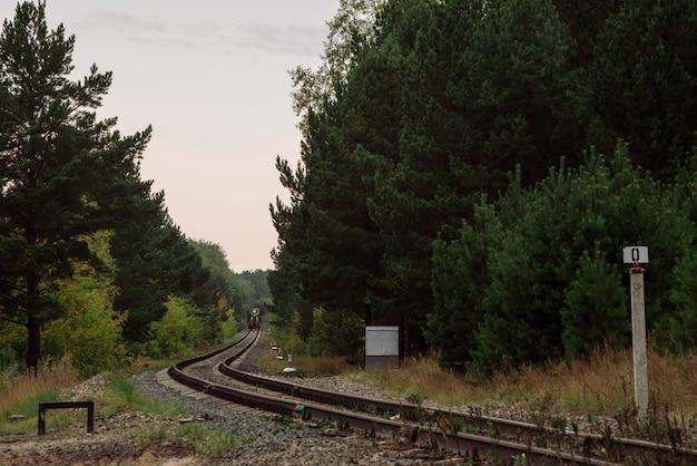 Boslandschap met locomotief op spoorweg