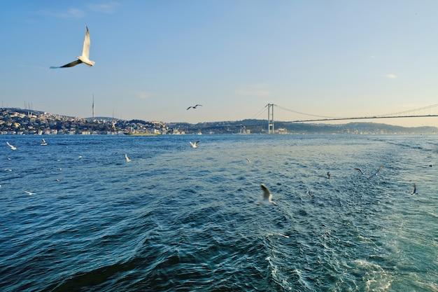 Bosporus tussen europa en klein-azië. samen met de dardanellen verbindt de zwarte zee met de egeïsche zee, die deel uitmaakt van de middellandse zee.