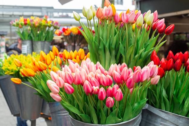 Bossen van prachtige tulpenbloemen te koop in een bloemenmarkt