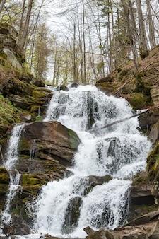 Boswaterval en rotsen die met mos worden behandeld