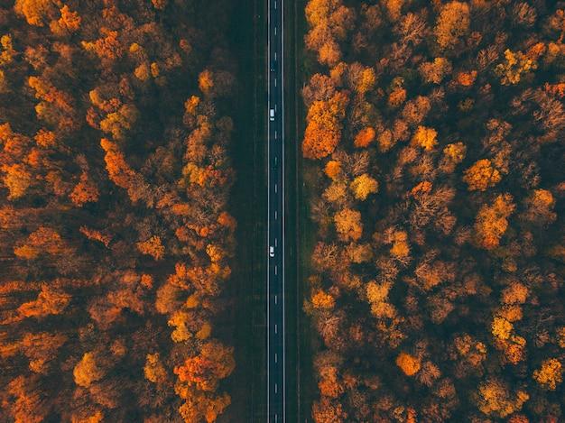 Bosweg met auto's. herfstkleuren. luchtfoto van een drone.