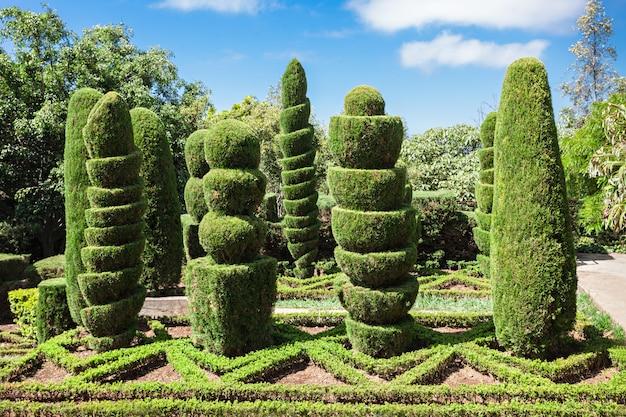 Botanische tuinen madeira